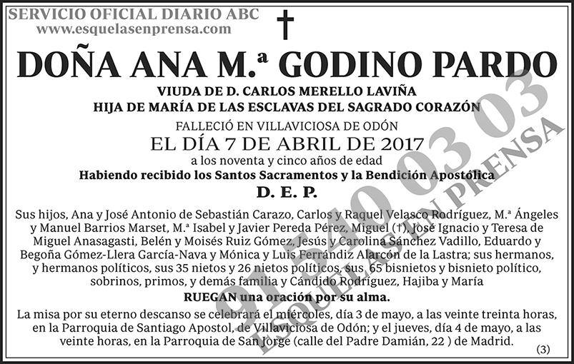 Ana M.ª Godino Pardo